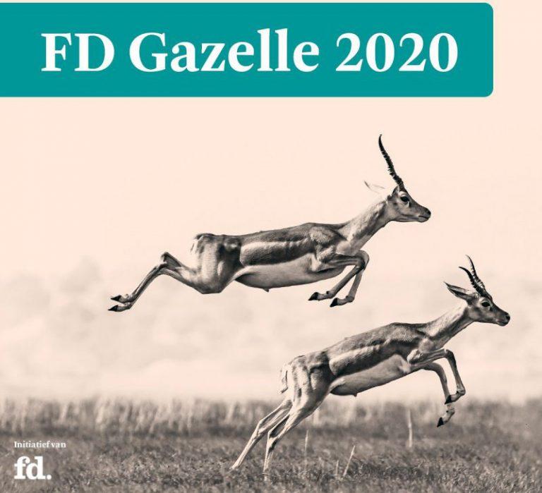 FD Gazelle 2020